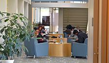 Naraghi Hall study area