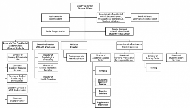 Student Affairs Division organization flow chart